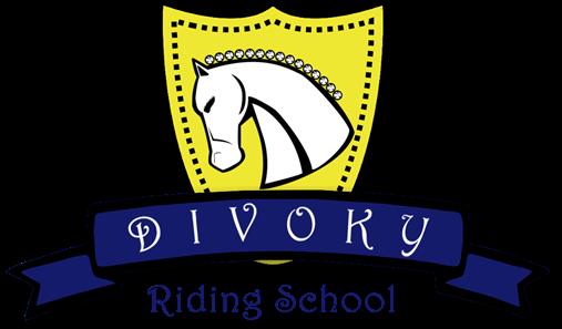 Image result for divoky riding school logo